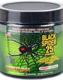Black Spider Pre-Trainer 210 гр.
